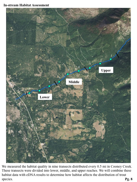 We measured the habitat quality in nine transects distributed every 0.5 mi in Cooney Creek. These transects were divided into lower, middle, and upper reaches.