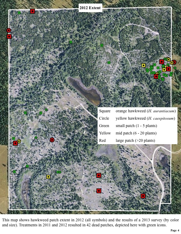 This map shows hawkweed patch extent in 2012 (all symbols) and the results of a 2013 survey.