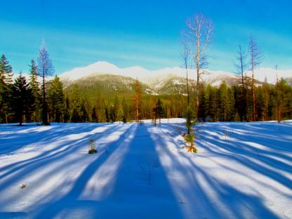 Snowy Swan Mountain Range by Larinda hunt